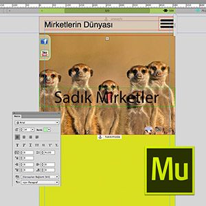Adobe Muse ile Responsive Web Design Video Eğitimi